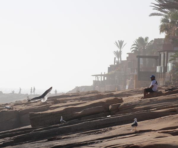 Hcl Surf Trip Maroc